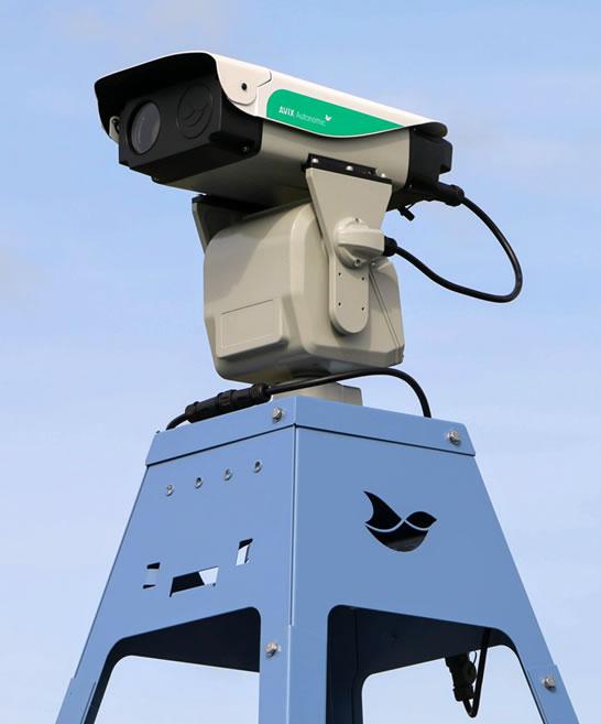 Dissuasore laser anti piccioni