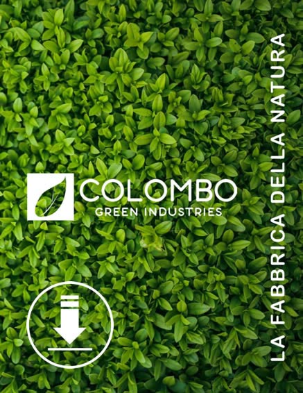 Colombo Green Industries